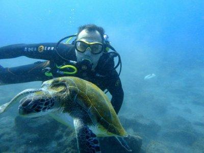Discover Scuba Diving en Puerto de Santiago