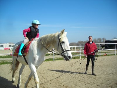 Monthly horse riding lesson package, 1 hour/week