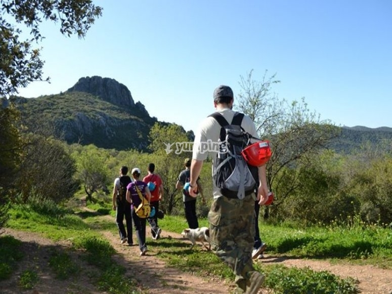 Visit the nature with your team