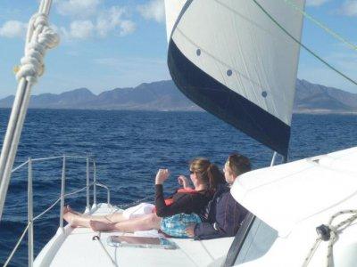 双体船帆船 - 海豚