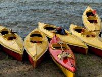 Varios kayaks monoplaza
