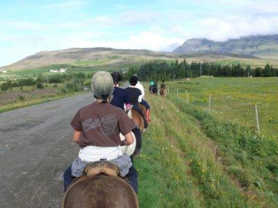 Ruta a caballo por Elche. 1 hora