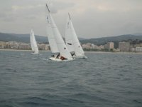 Sailboats in competition
