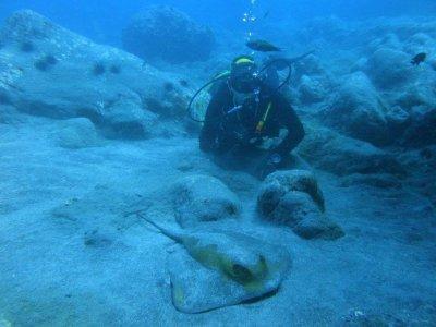 Scuba Diving in Puerto de Santiago