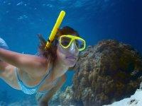 Snorkel en Noja 2h