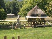 cabana en un entorno natural