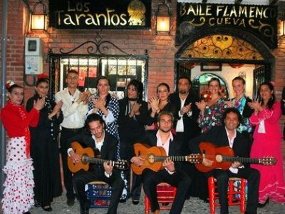 Ruta en segway por Granada + espectáculo flamenco