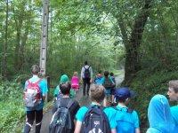 Excursion en el bosque