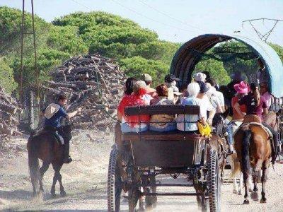 Camino Rociero a cavallo attraverso il cuore di Doñana