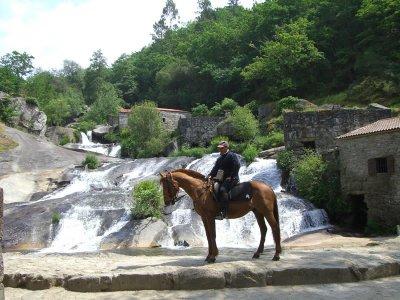 Portuguese Route of Santiago 8 days