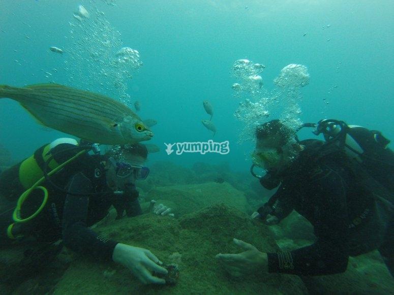Godersi l'immersione