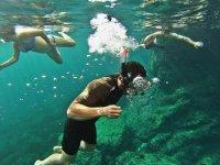 Buscando fauna en el mar