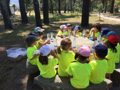 Colegio Internacional Eirís Campamentos Urbanos