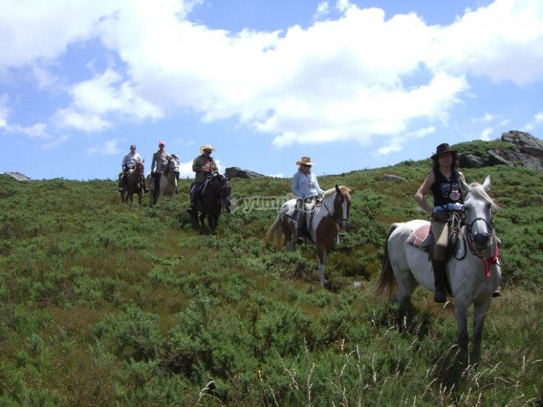 preregrinacion a caballo