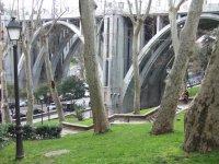 Arboles junto al puente