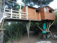 Camera da letto sugli alberi