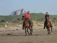on horses