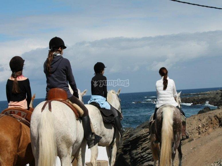 Horse ride tour