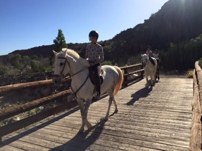 45min horse ride tour, south of Gran Canaria