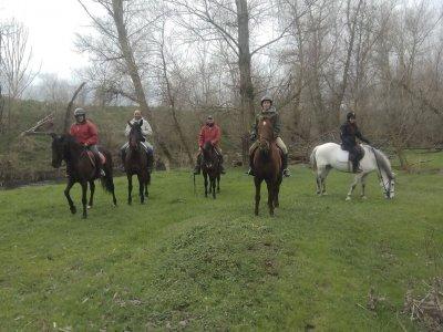 Especial parejas ruta a caballo 1 h + clase 30 min