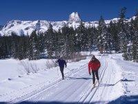 Esquí de fondo en las mejores estaciones internacionales