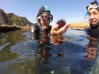 Con un erizo de mar