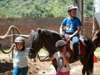Peques che trasportano il cavallo del redini