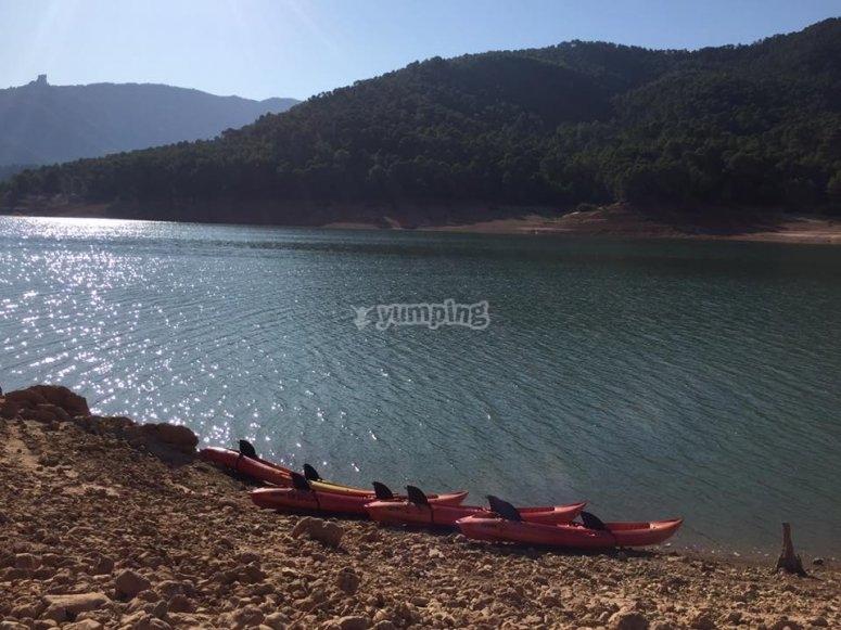 Flota de kayaks para rutas familiares