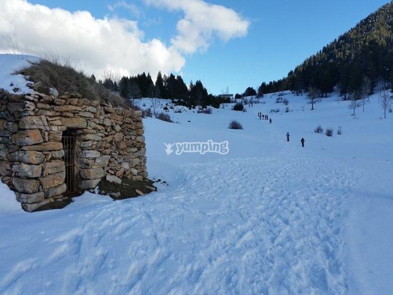 独特的雪域景观