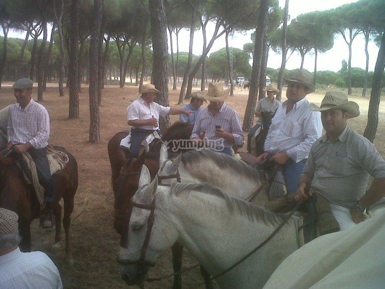 Paseando en coche de caballos