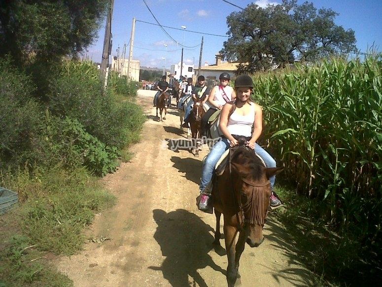 Actividad en coche de caballos