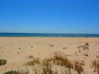 Nuestra bonita playa