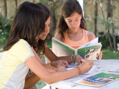 Speak & Fun Campamentos Málaga Campamentos de Inglés