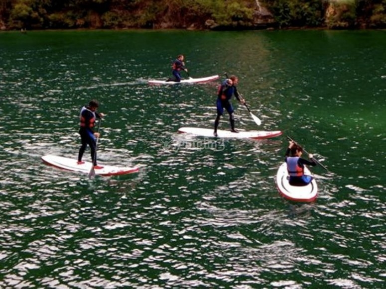 Learn how to stand up paddle surf