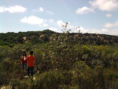Explora Natura Campamentos de Inglés