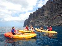 Cetacean sighting and kayak route in Los Gigantes