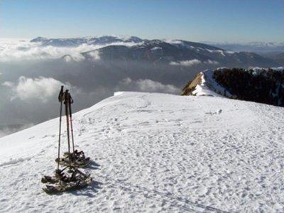 Ruta con raquetas de nieve, 1 día, grupos pequeños