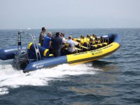 Ruta maritima en el nautilus