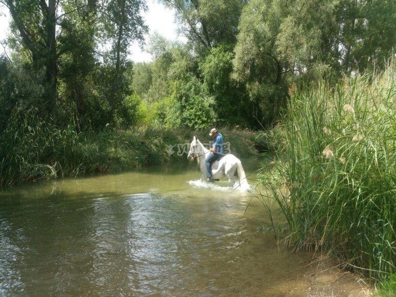 En el río a caballo