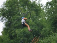 Zip line in the forest