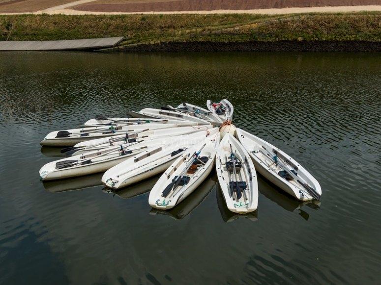 Flota de canoas