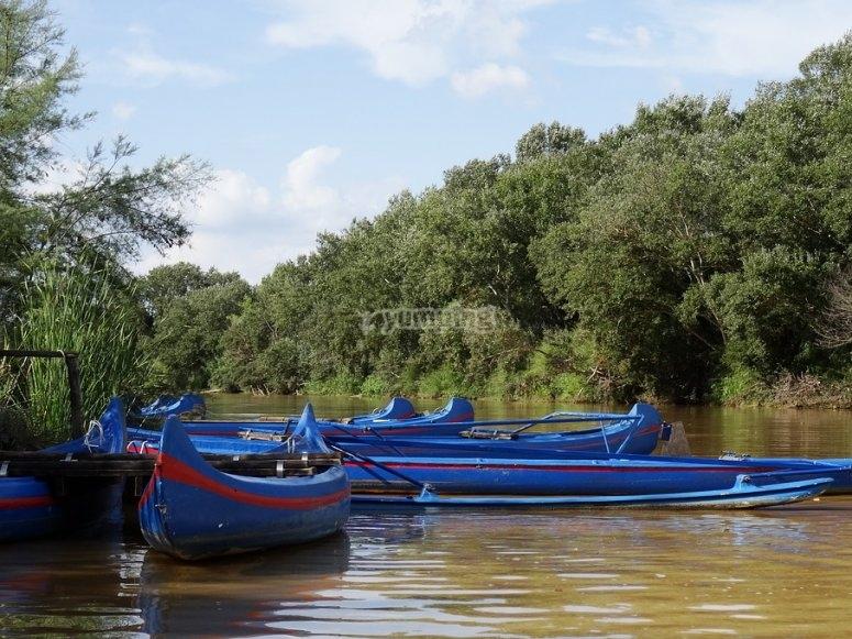 Vista de las canoas