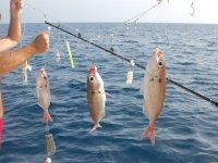 Quitando el anzuelo a los peces