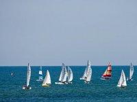 Navegando en grupo a vela