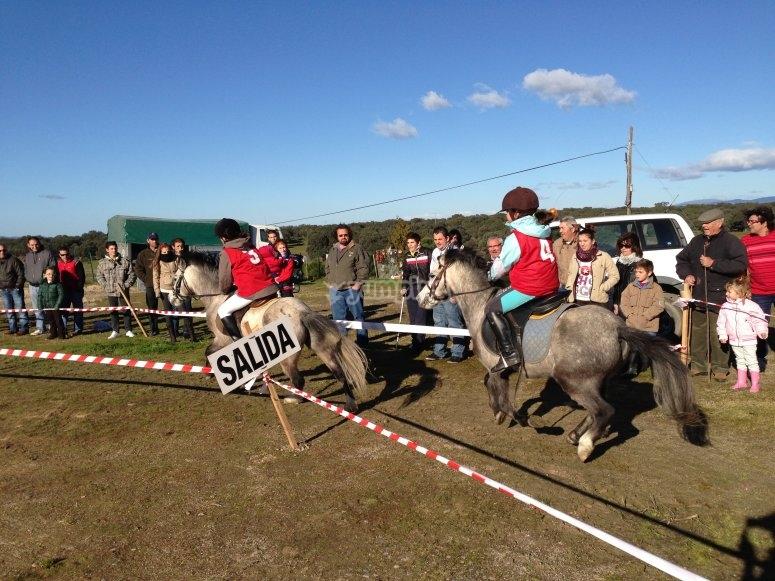 Inicio de la carrera de ponis
