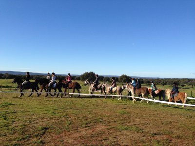 4 lessons horseriding voucher in Navalmoral