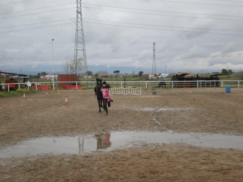Gymkhana con caballos