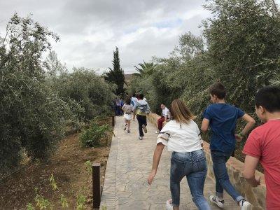 Guadalhorce Arboretum