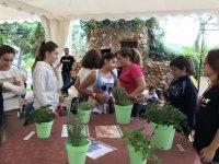 Aprendiendo más acerca de la vegetación
