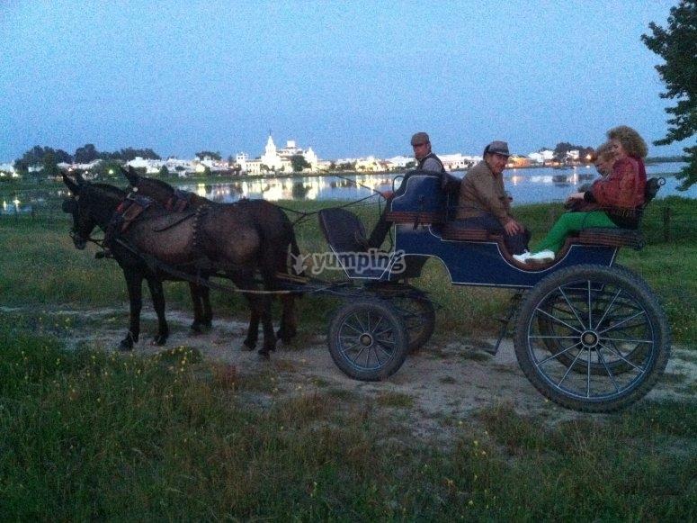 Carro tirado por mulas